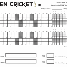 Open Cricket 14 Game