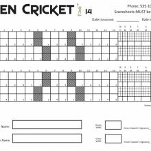 Open Cricket 14 Game